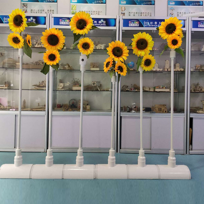 Sunflowers face detect device
